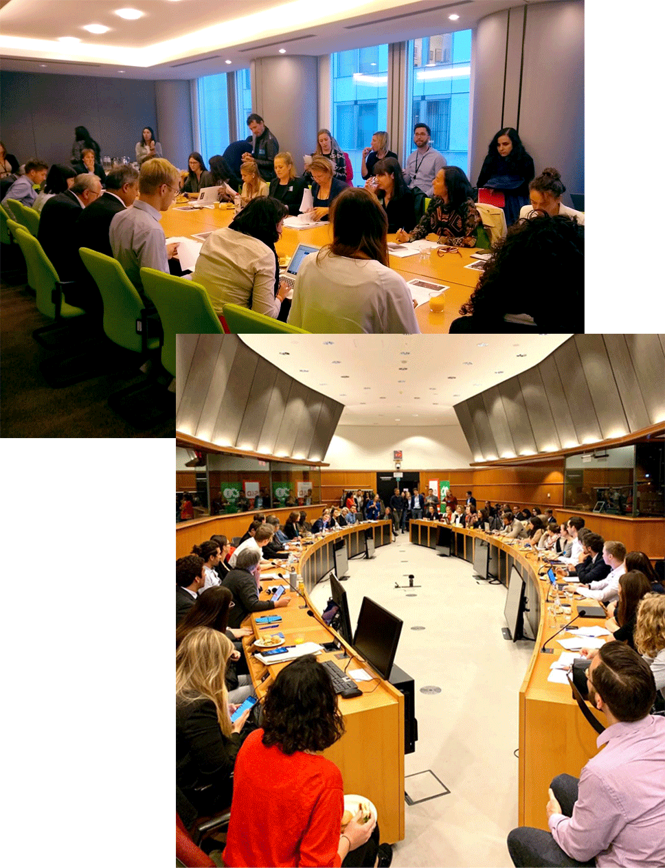 Refugee Rights Europe Training Additional Capacity Building and Training Resources